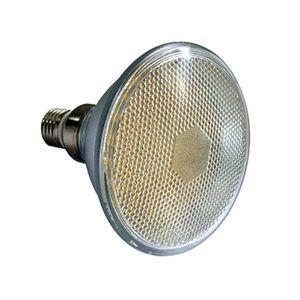 BOMBILLO LED PAR 30- 90 LED- CW